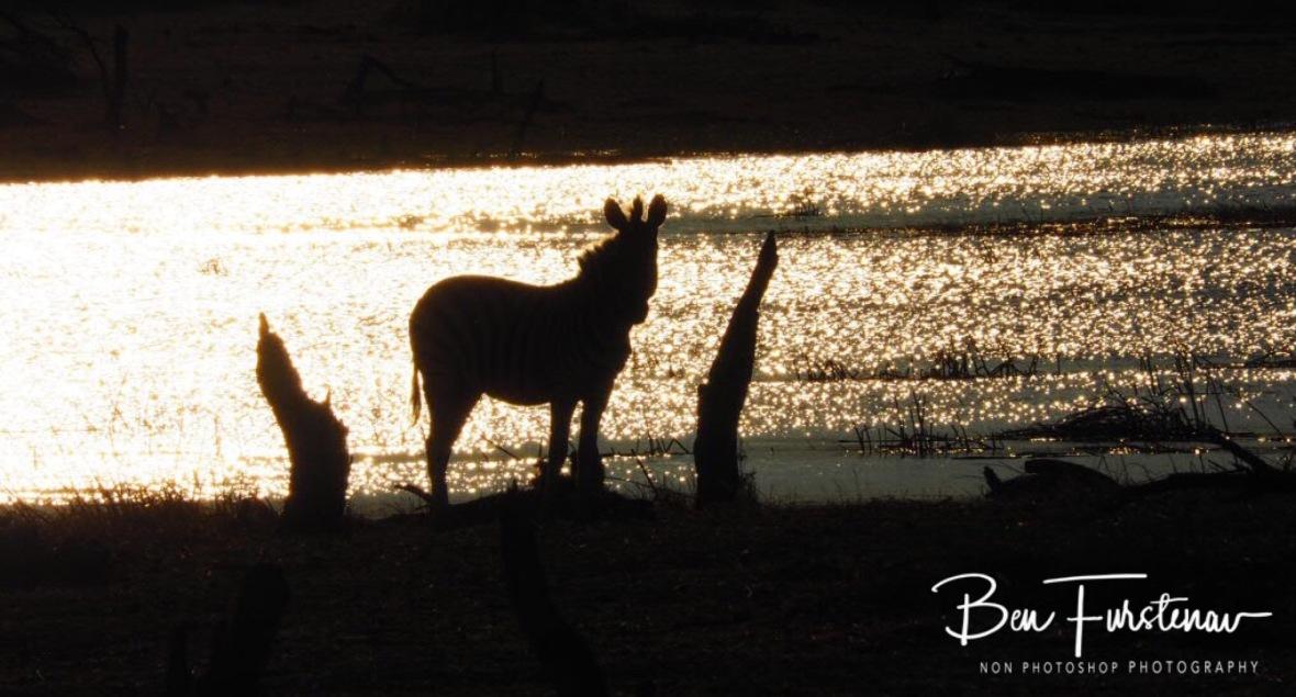 Sun shadows, Makgadikgadi National Park, Botswana