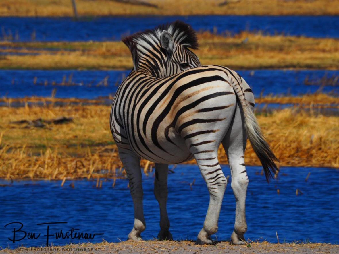 Stunning, Makgadikgadi National Park, Botswana