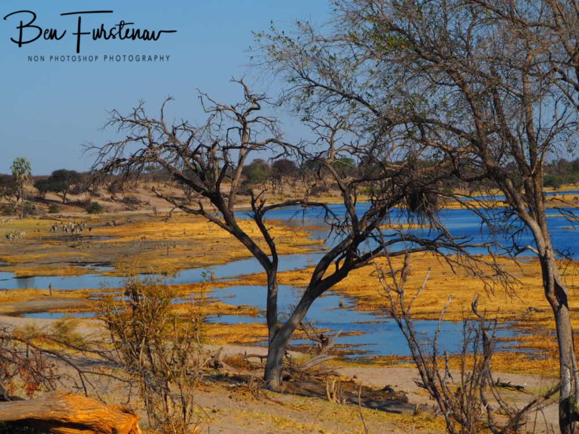 Colourful scenery, Makgadikgadi National Park, Botswana