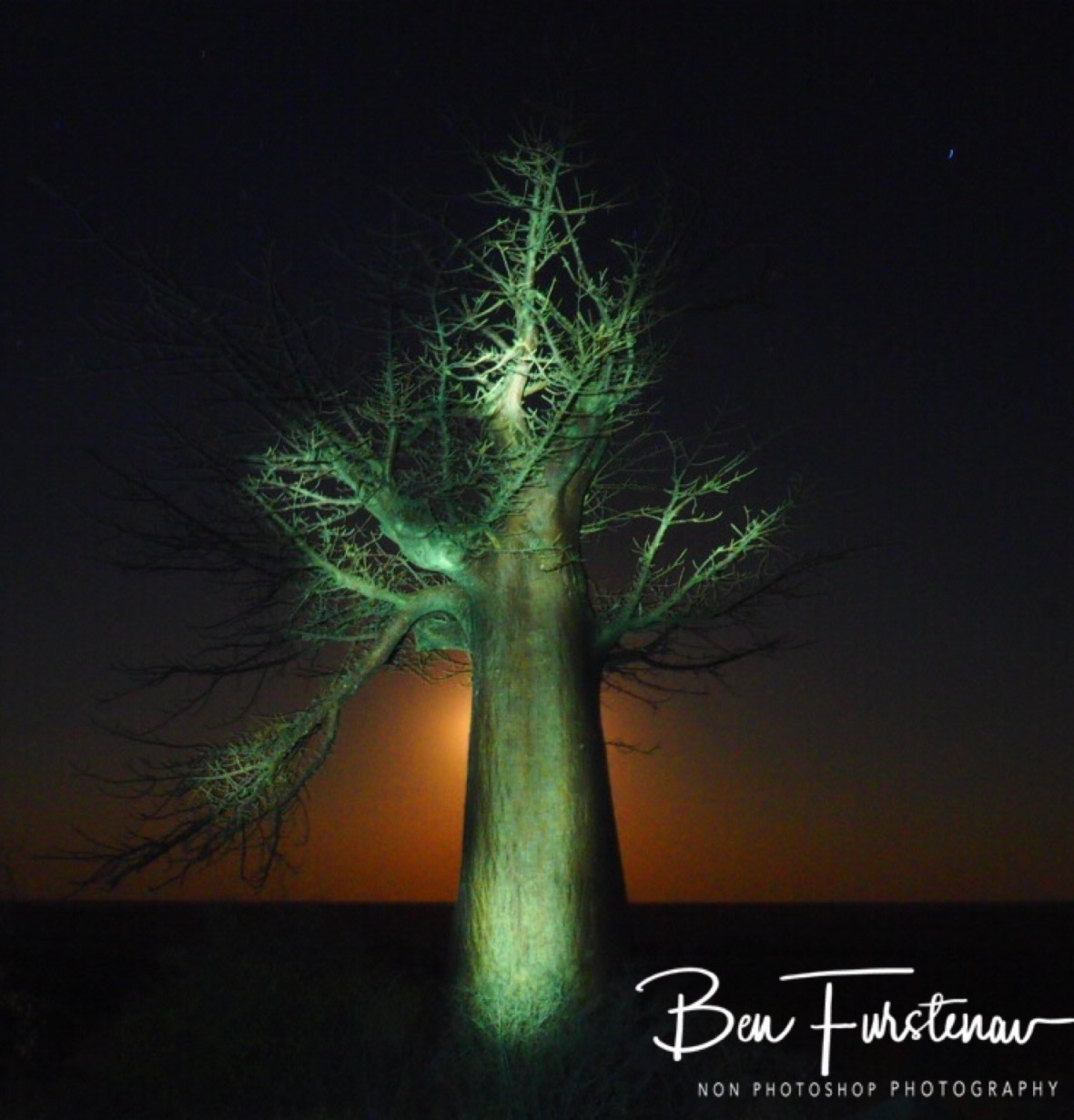 Light painting on Kubu Island, Makgadikgadi Salt Pans, Botswana