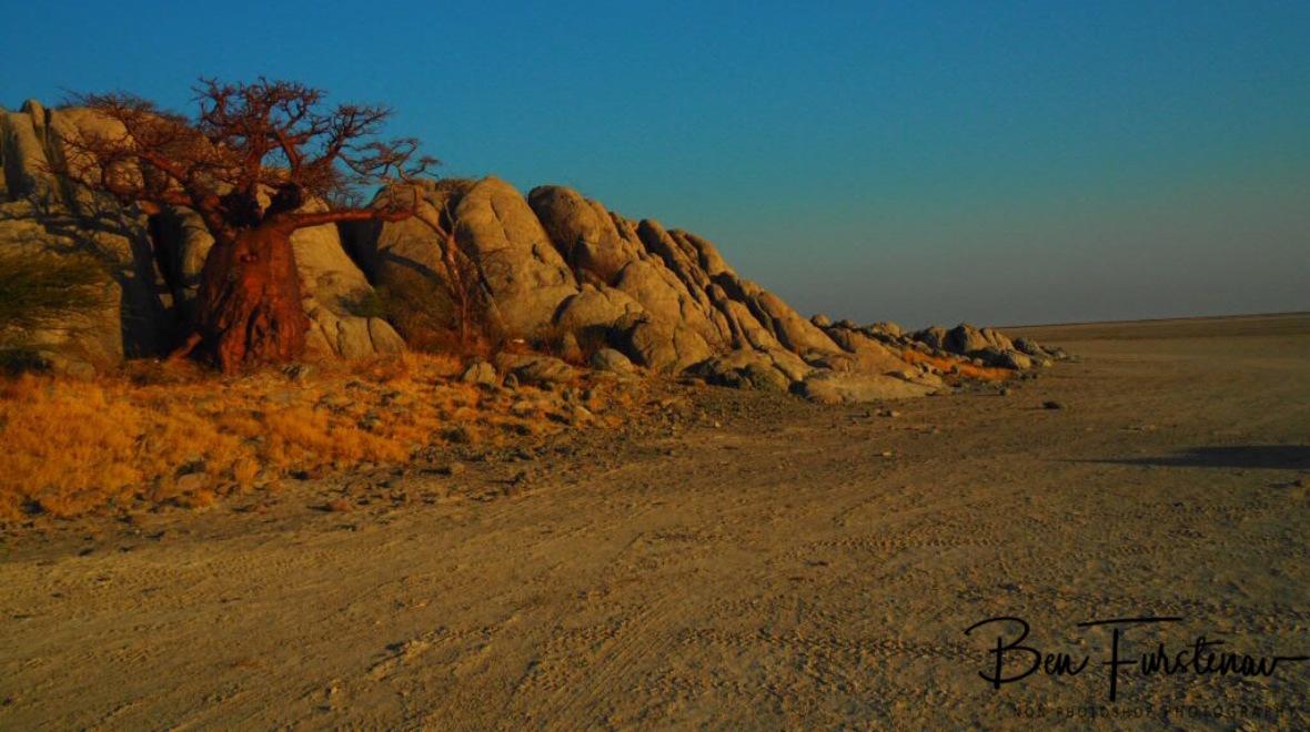 Edging granite boulders, Kubu Island, Makgadikgadi Salt Pans, Botswana