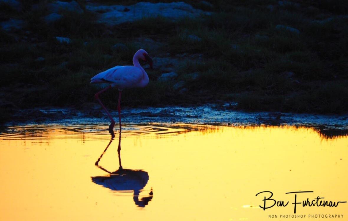 Sunset reflections, Makgadikgadi Salt Pans, Botswana