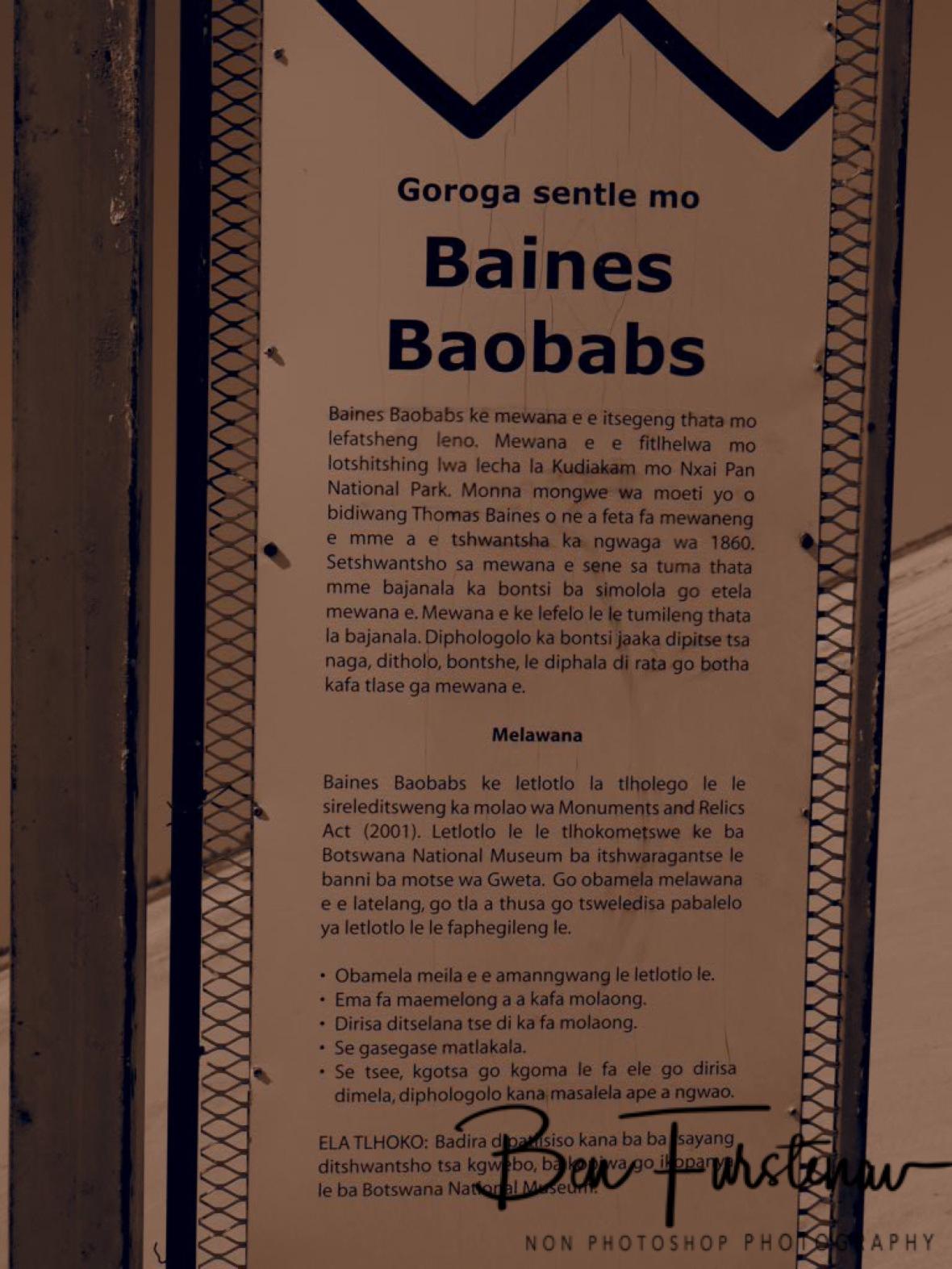 Baines Baobab signpost, Makgadikgadi Salt Pans, Botswana