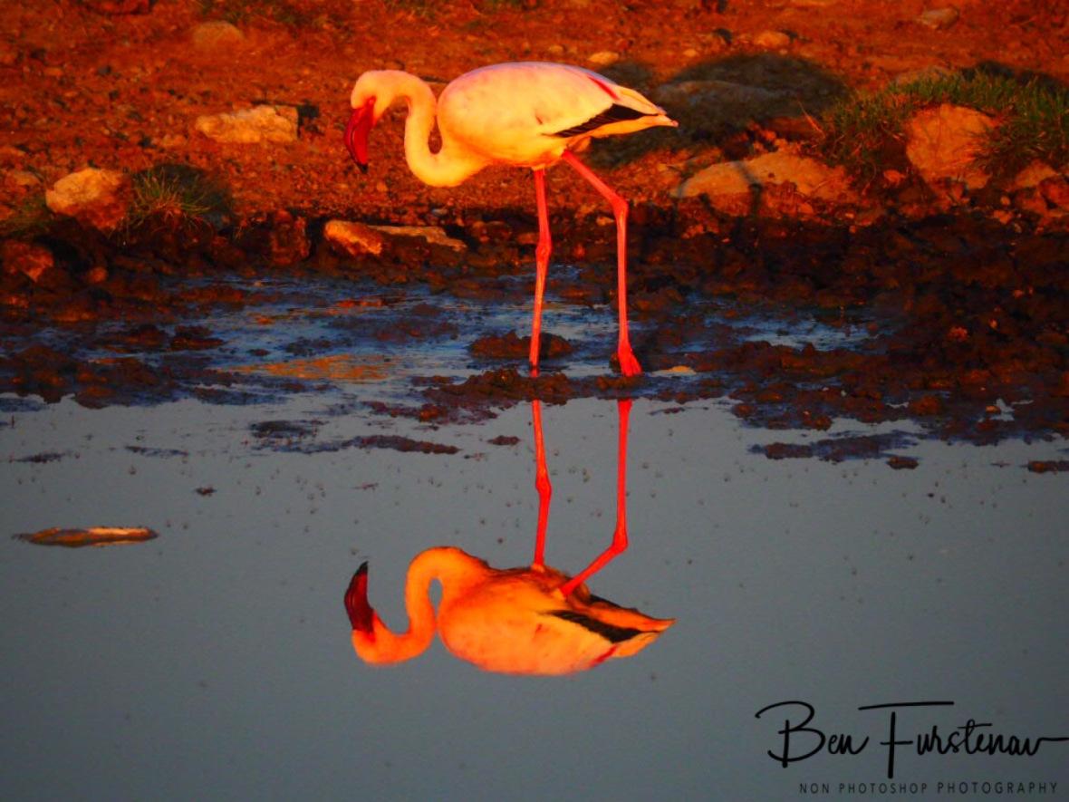 Breakfast, Makgadikgadi Salt Pans, Botswana