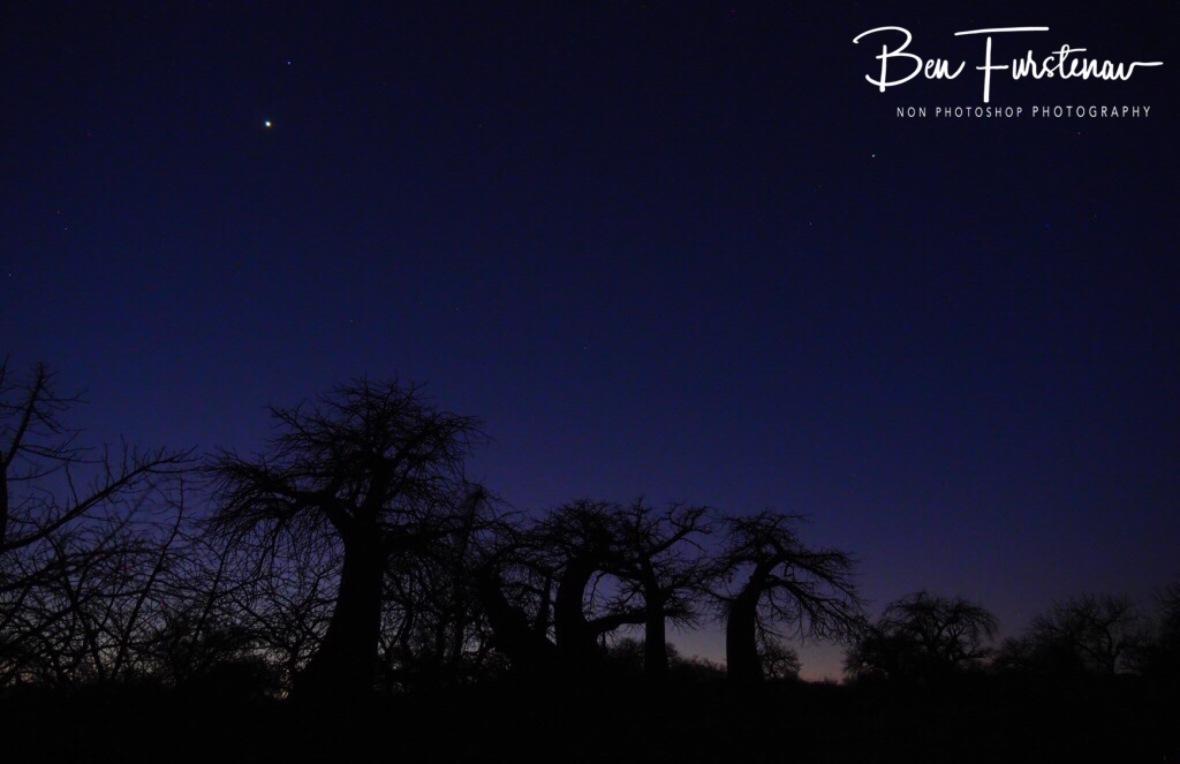 Stary night over Kubu Island, Makgadikgadi Salt Pans, Botswana