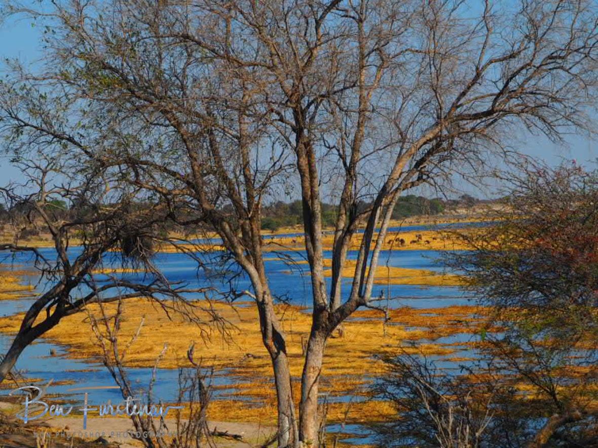 Bodeti River bed, Makgadikgadi National Park, Botswana
