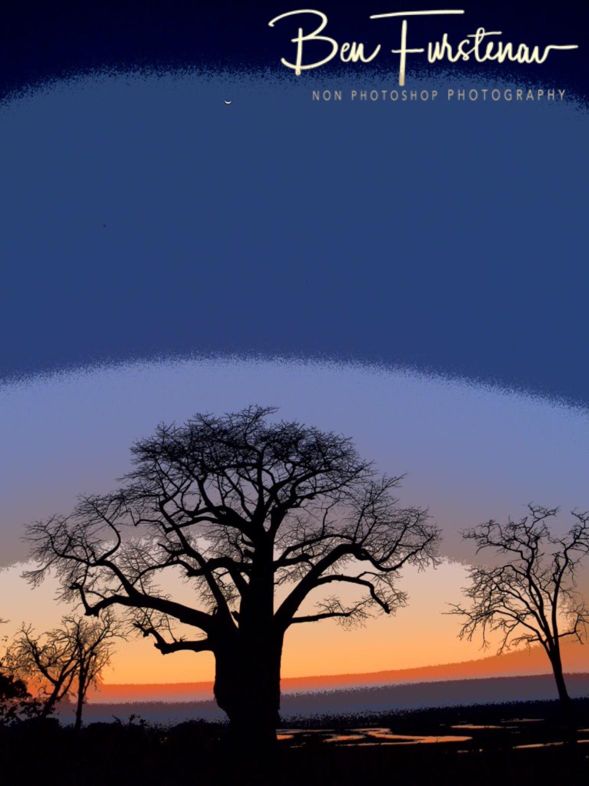 Last light in painting, Okavango Delta, Botswana