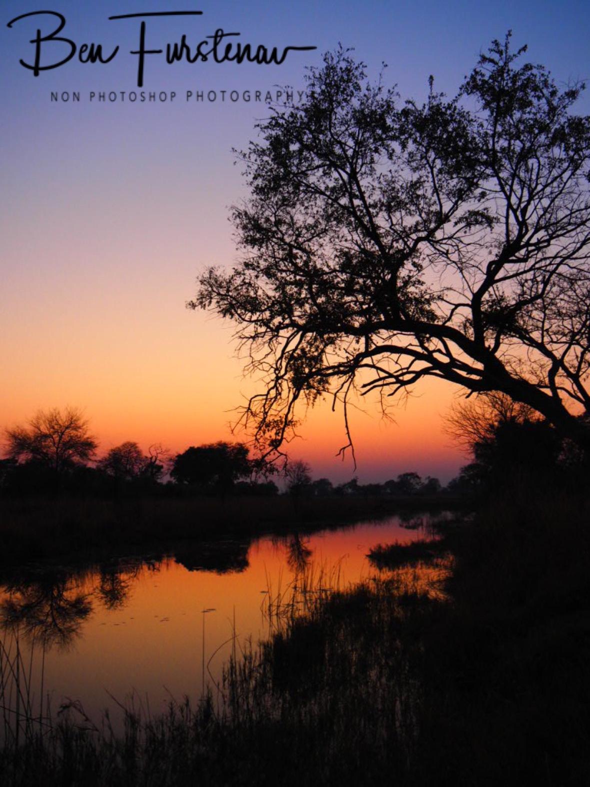 Early morning glory, Nkasa National Park, Namibia