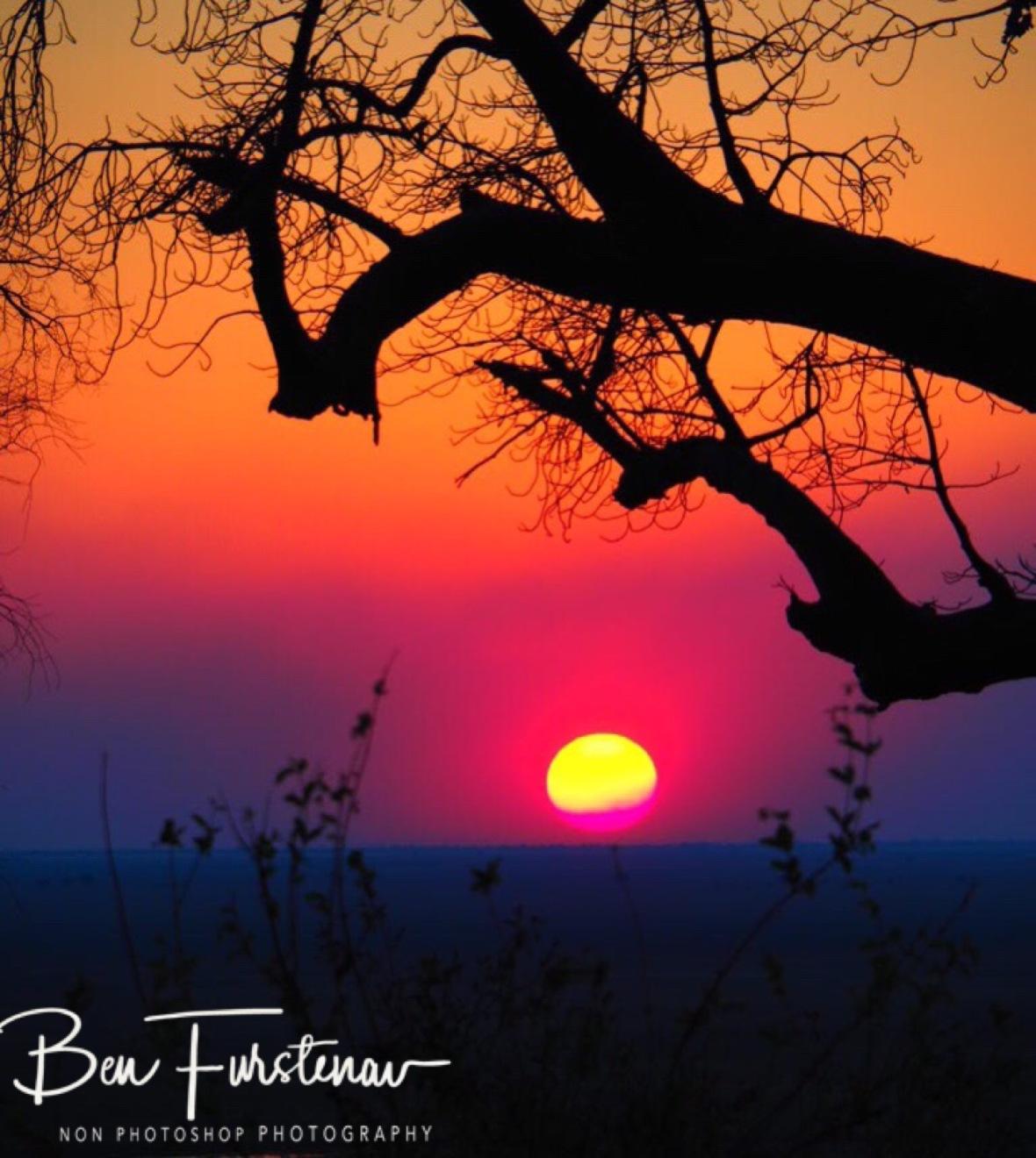 Spectrum off colours, Okavango Delta, Botswana