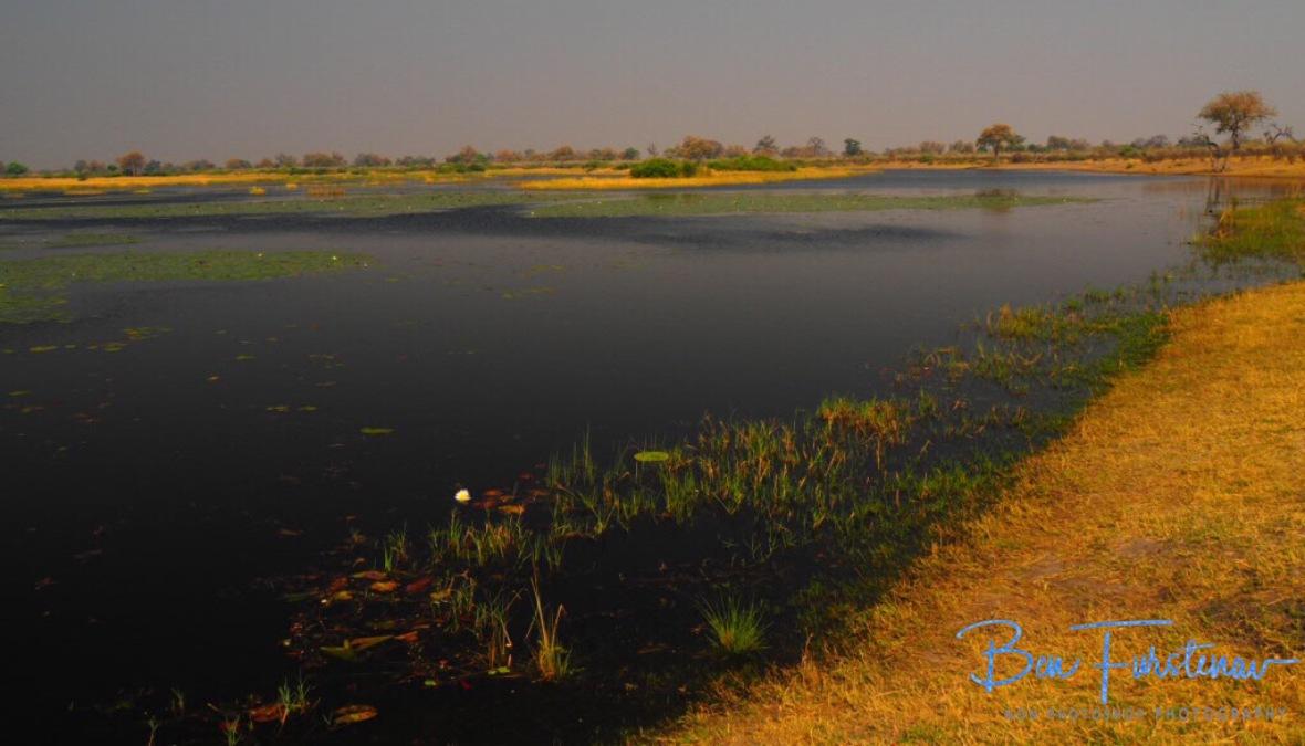 Empty spaces, Mudumu National Park, Namibia