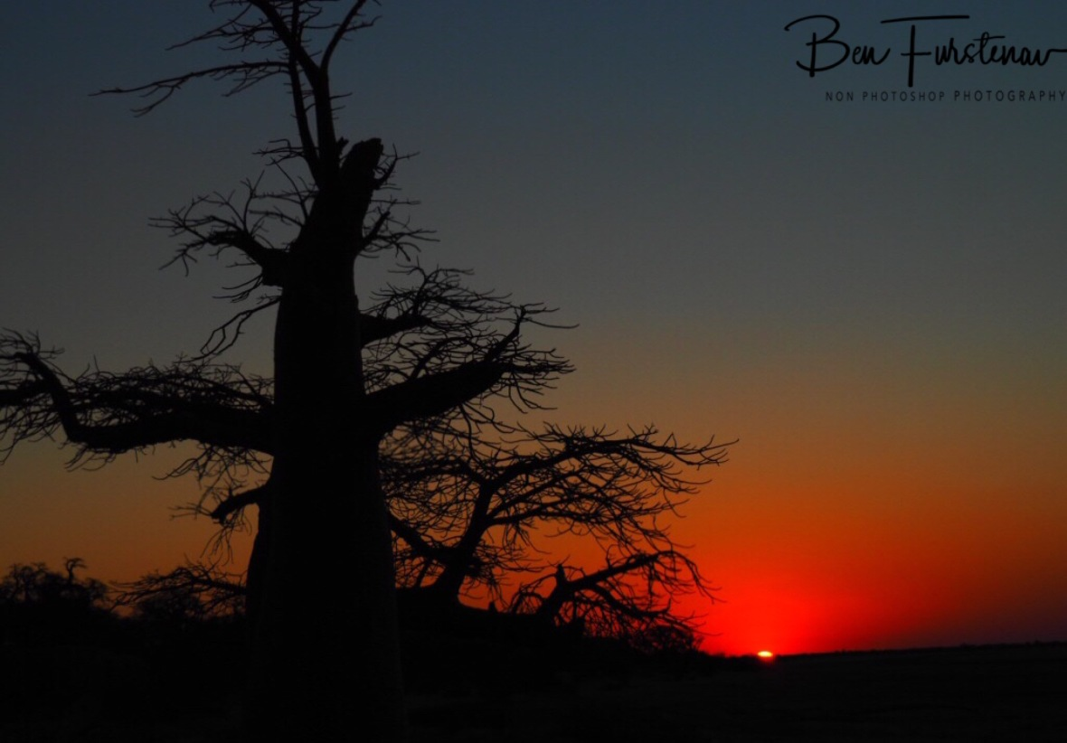 Last sunraus off the day on Kubu Island, Makgadikgadi Salt Pans, Botswana