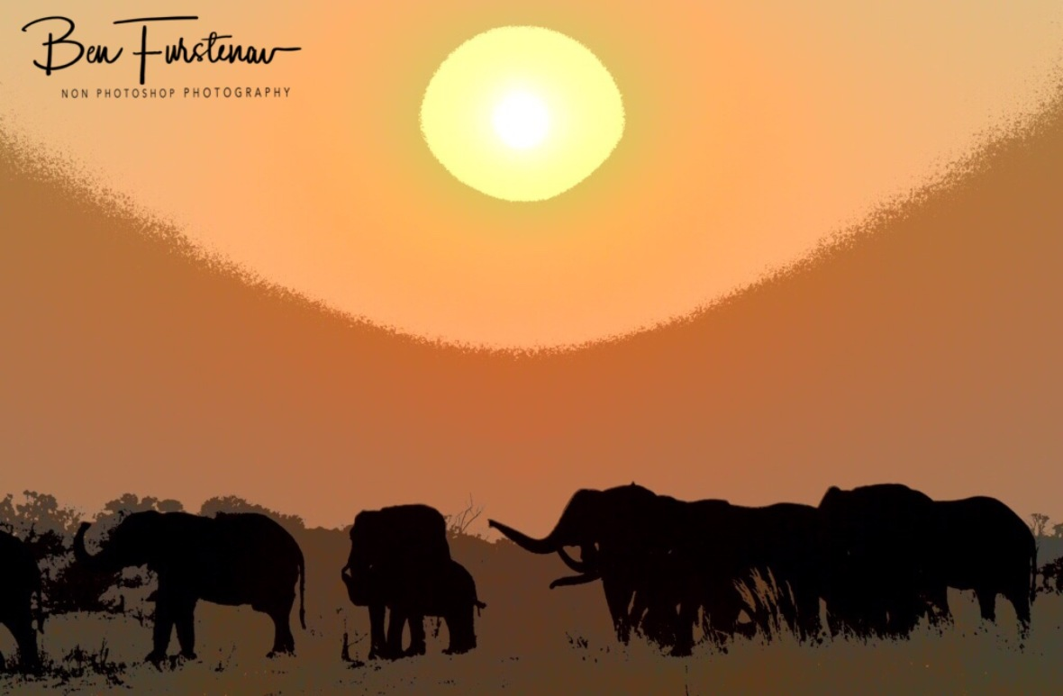 Elephantastic sunset at Khaudum National Park, Namibia
