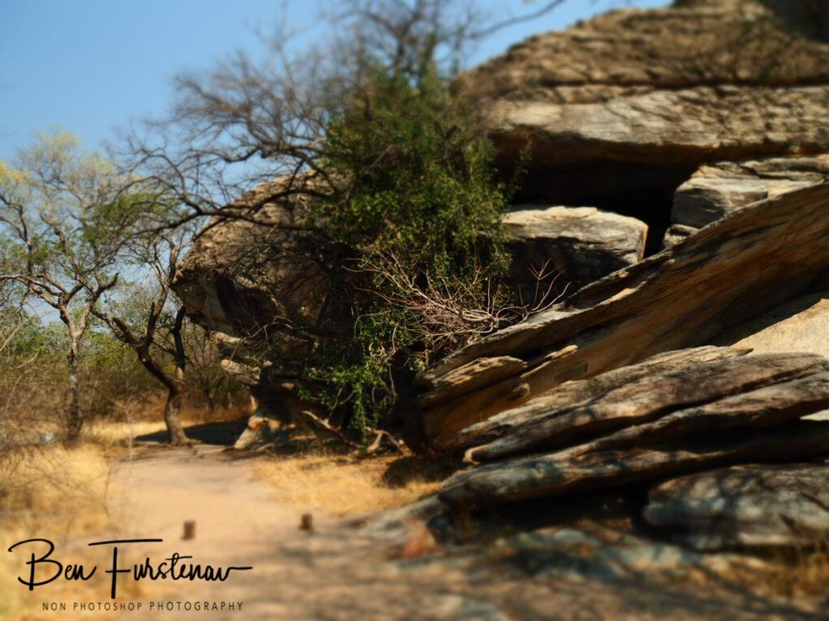 Natural fence, Tsolido Hills, Kalahari desert, Botswana