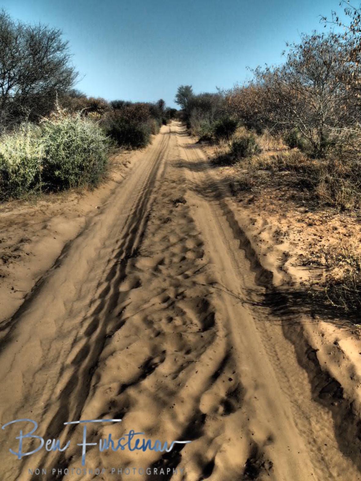 Straight in to the Kalahari desert, Botswana