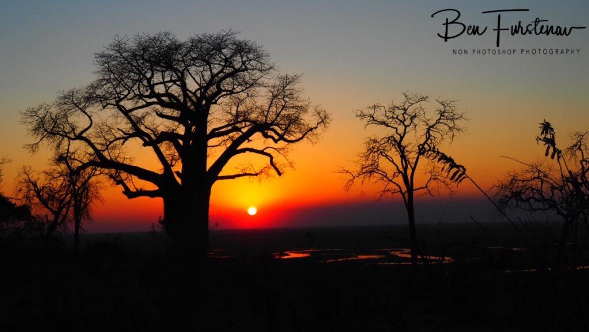 Sunlight fading, Okavango Delta, Botswana
