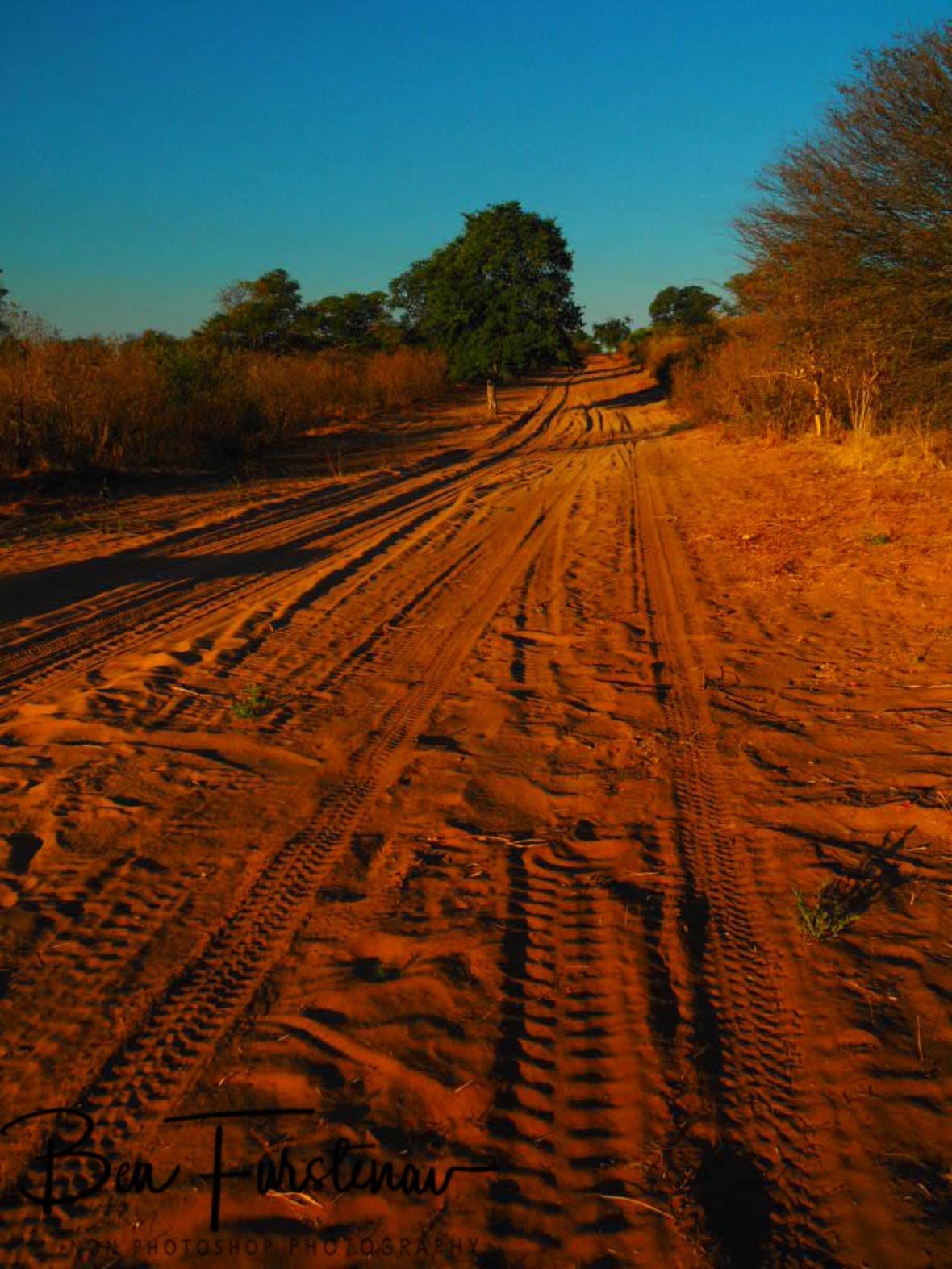 Outback track, Chobe National Park, Botswana