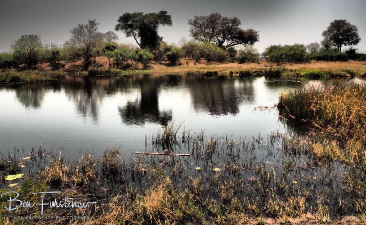 Scary quiet, Nkasa National Park, Namibia