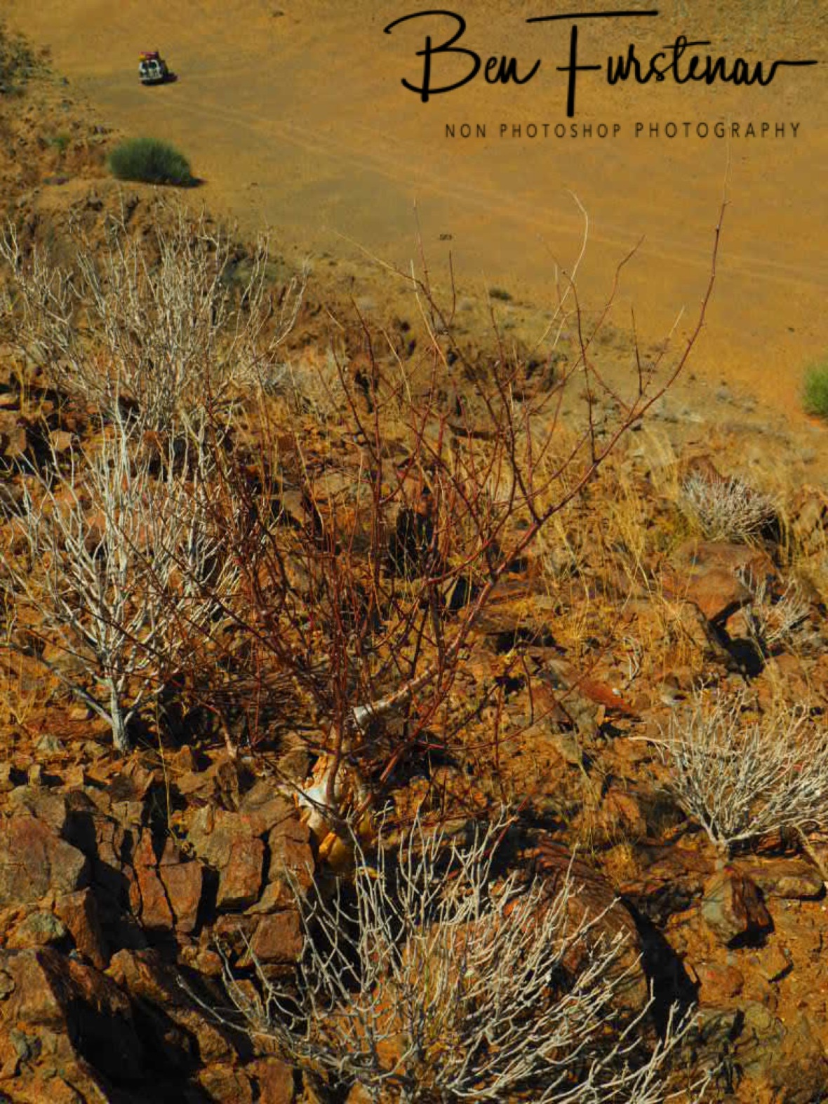 Zimba parked in the distance, Damaraland, Namibia