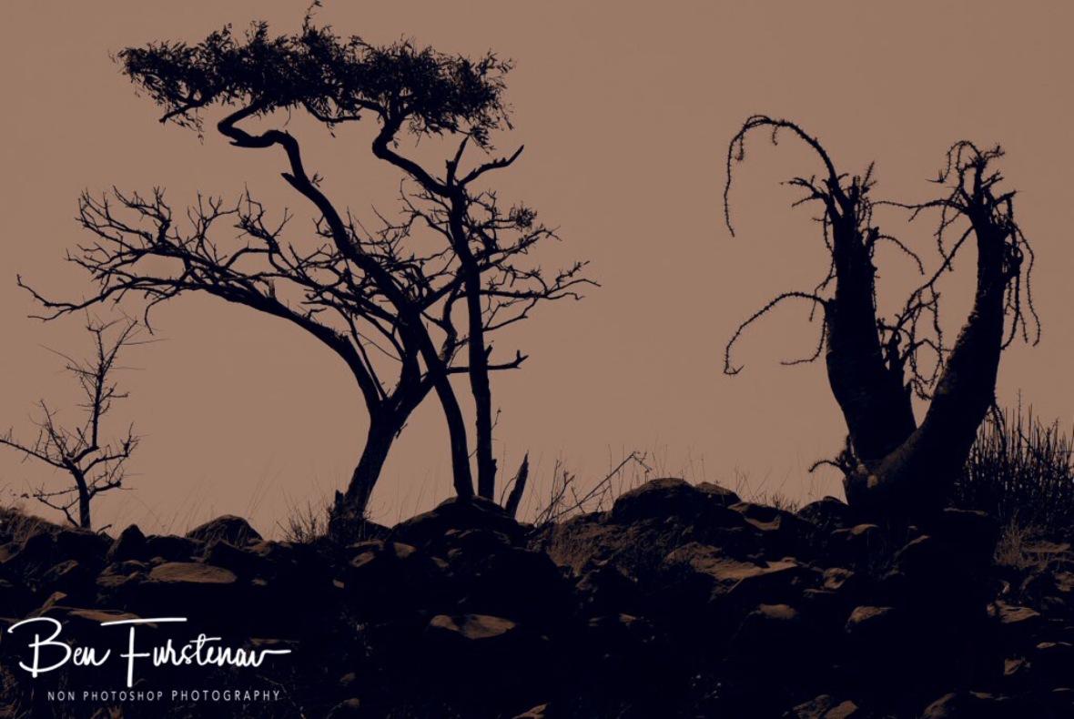 Sepia sun shadows, Groote Berge, Kaokoveld, Namibia