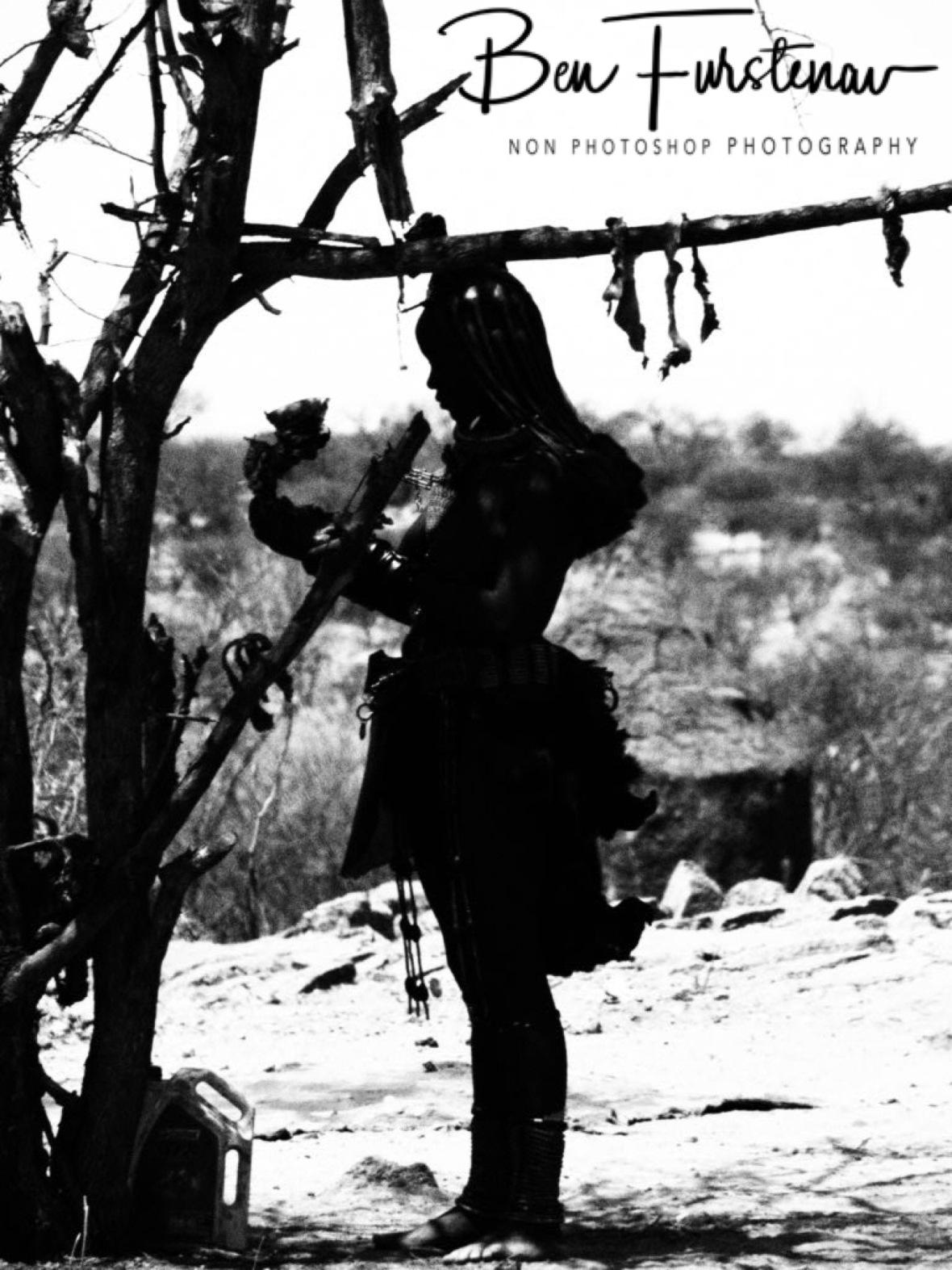 Leather tree, Omusaona Himba Village, Kamanjab, Namibia