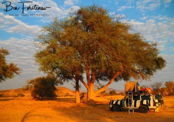 Warming early morning rays, Damaraland, Namibia