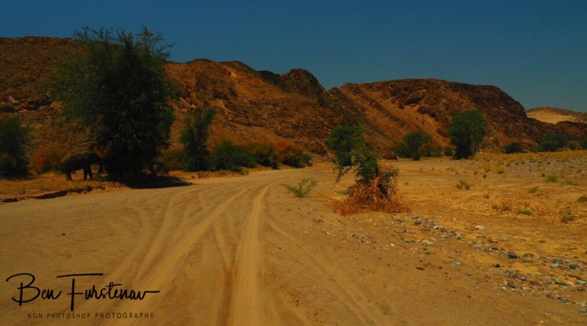 Ghostly appearance, Damaraland, Namibia