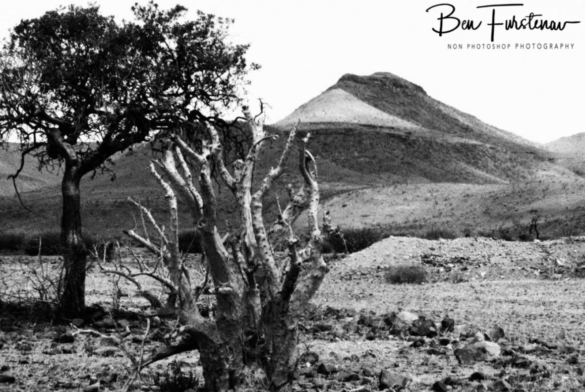 Moonlike surroundings, Groote Berge, Kaokoveld, Namibia