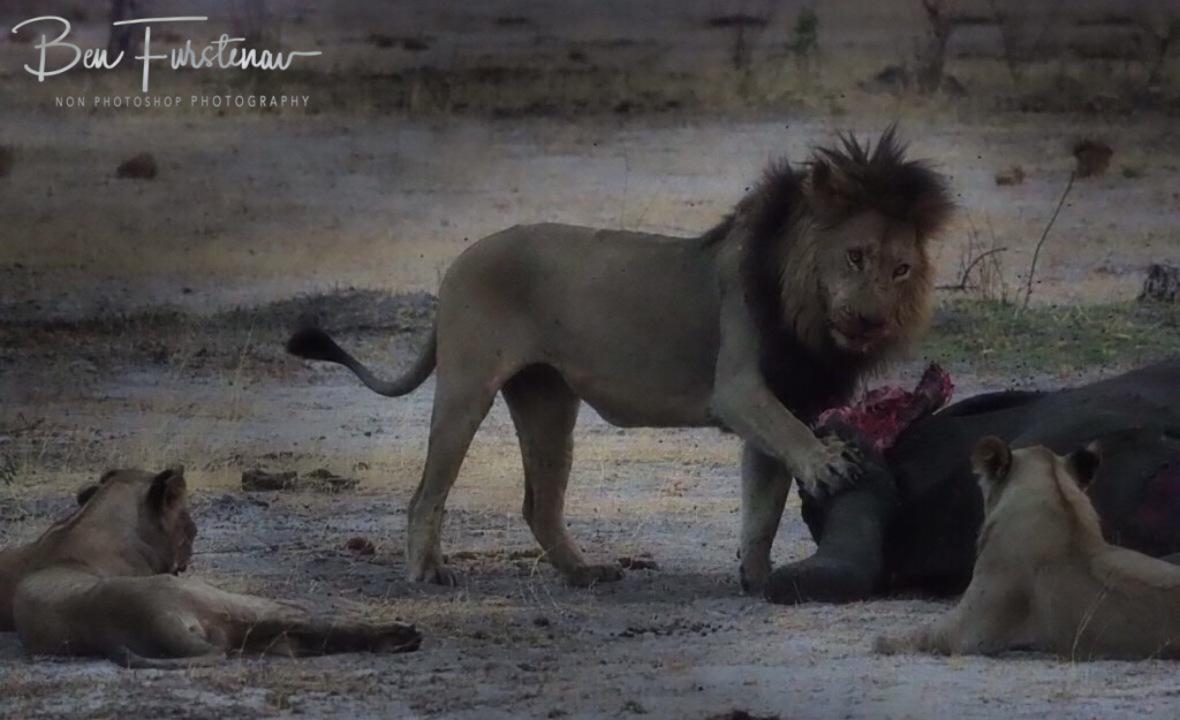One last warning, Khaudum National Park, Namibia