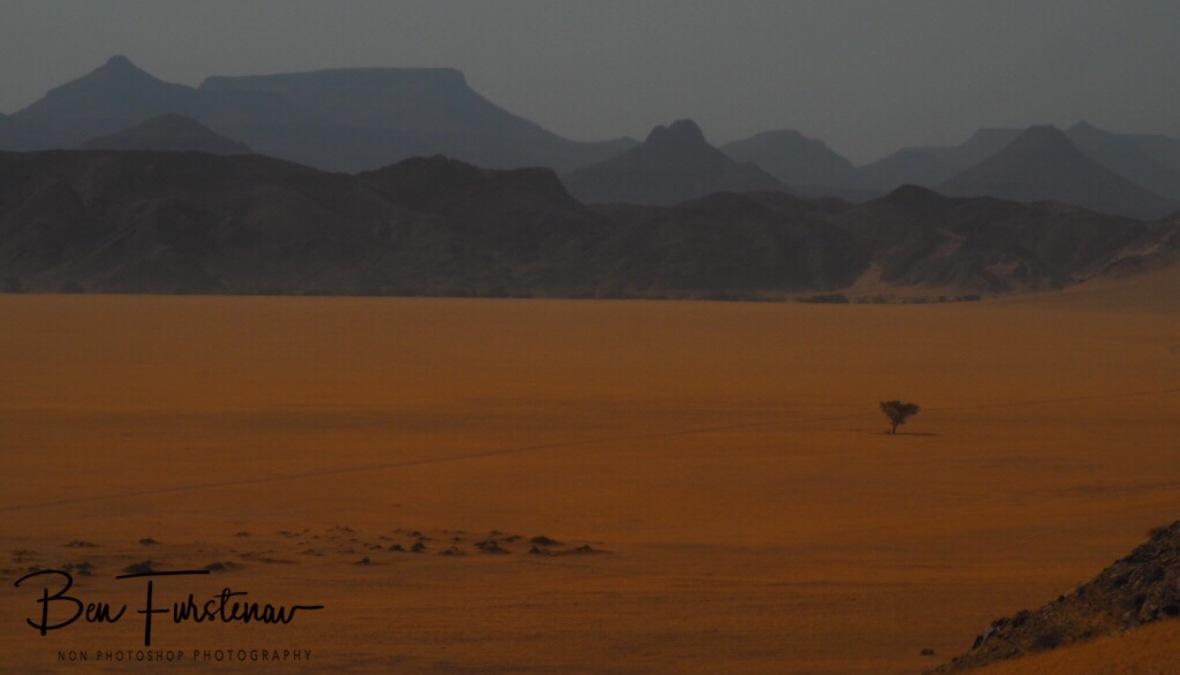 Surreal and arid, Damaraland, Namibia
