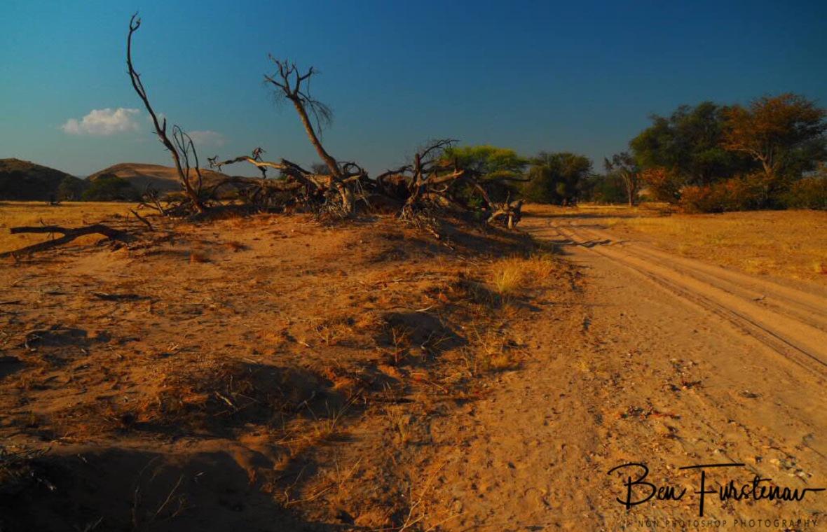 Camp next to riverbed express way, Damaraland, Namibia