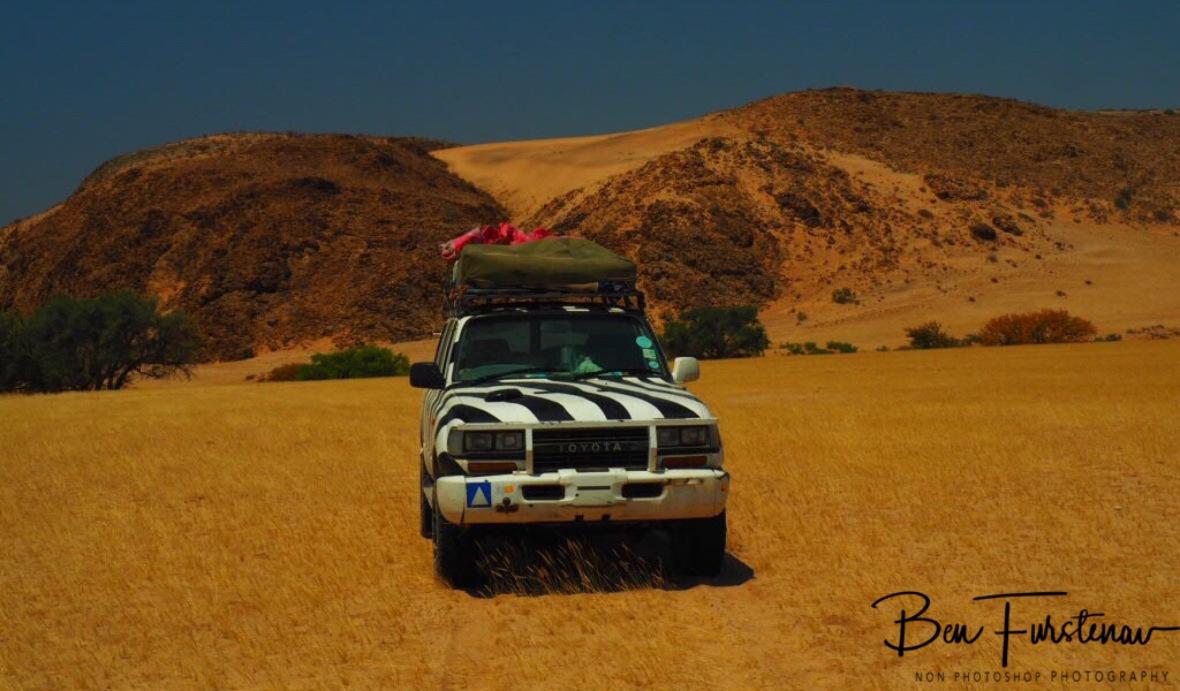 Zimba in front off slate rock dunes, Damaraland, Namibia