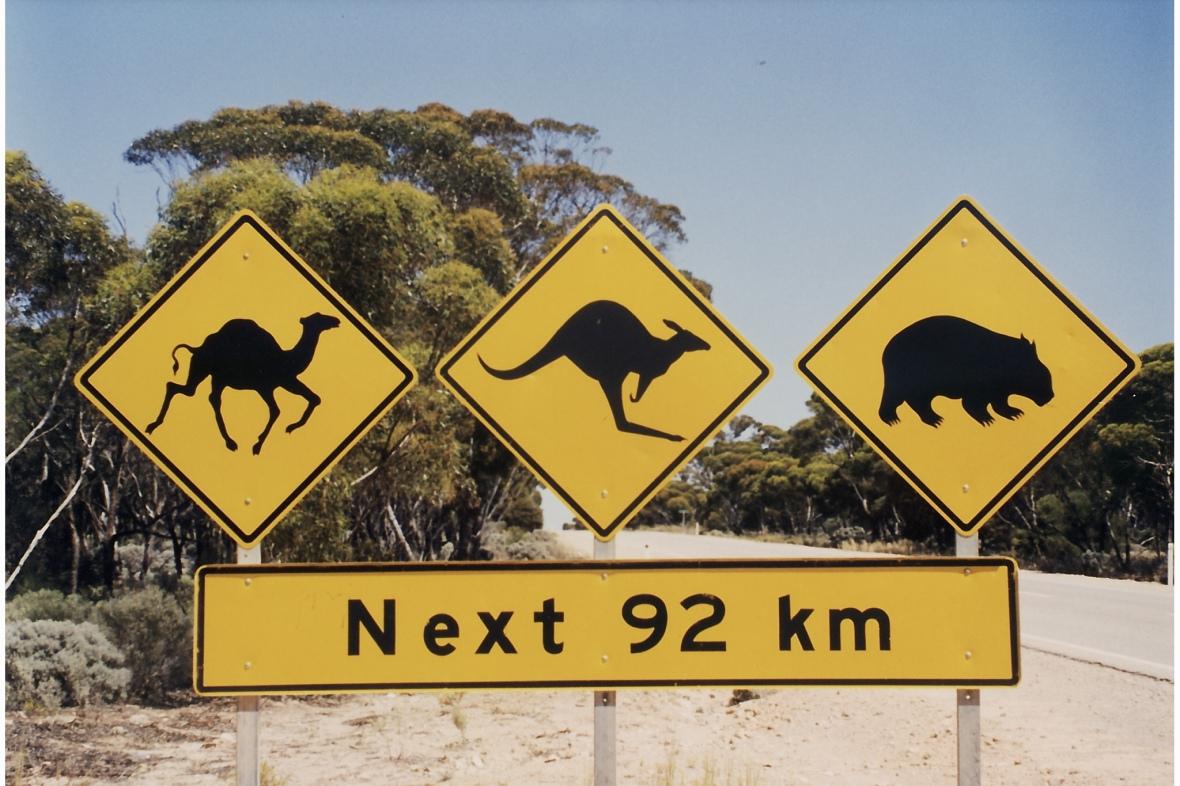 Australia's Iconic roadsign along the Nullarbor, South Australia, Australia