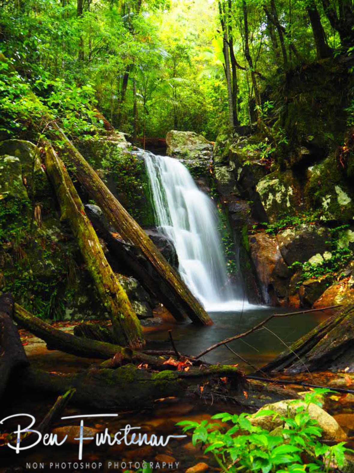 Summit Falls largest cascade, Washpool National Park, NSW, Australia