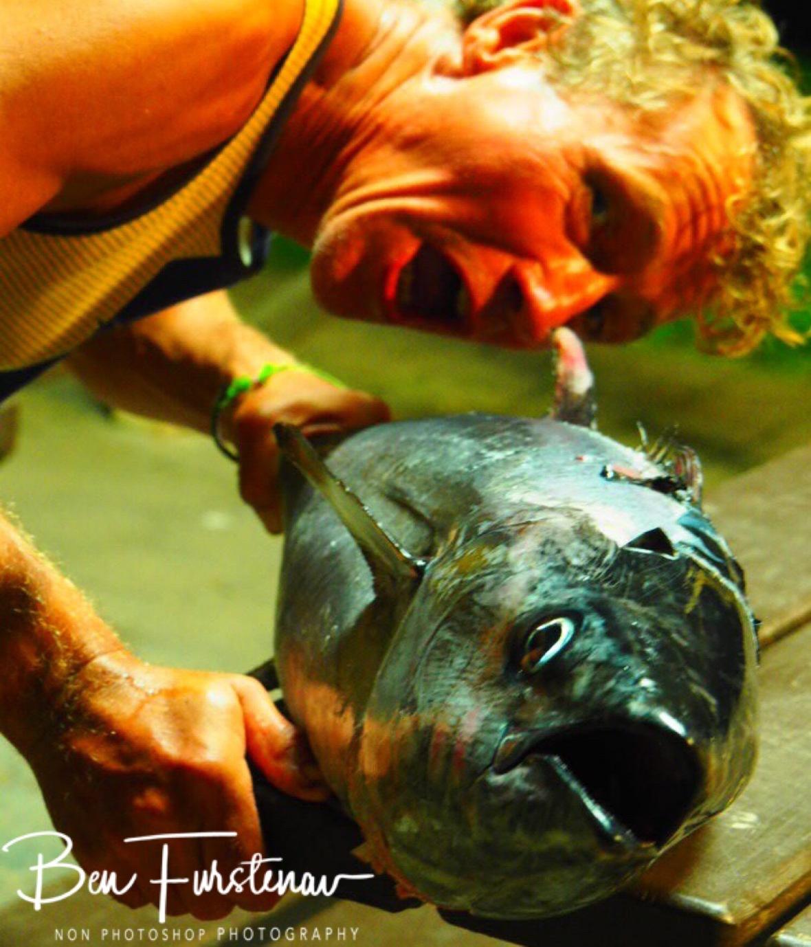 Tuna impressions, Diggers Beach, New South Wales, Australia