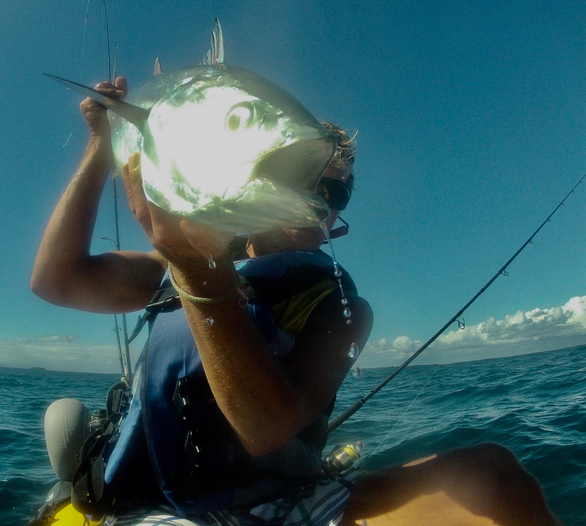 Another speedy Mack Tuna caught and released of the Coffs Coastline, New South Wales, Australia