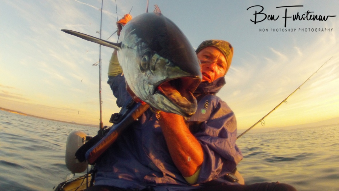 Another healthy Longtail Tuna was landed on my Maniyak at Woody Head, New South Wales, Australia