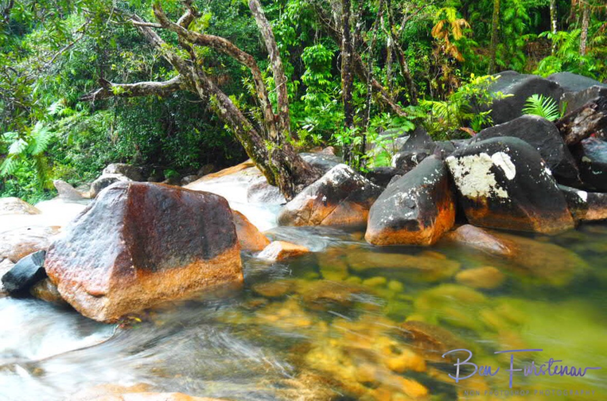 Creek blockade at Finch Hatton Gorge, Eungalla National Park, Queensland, Australia