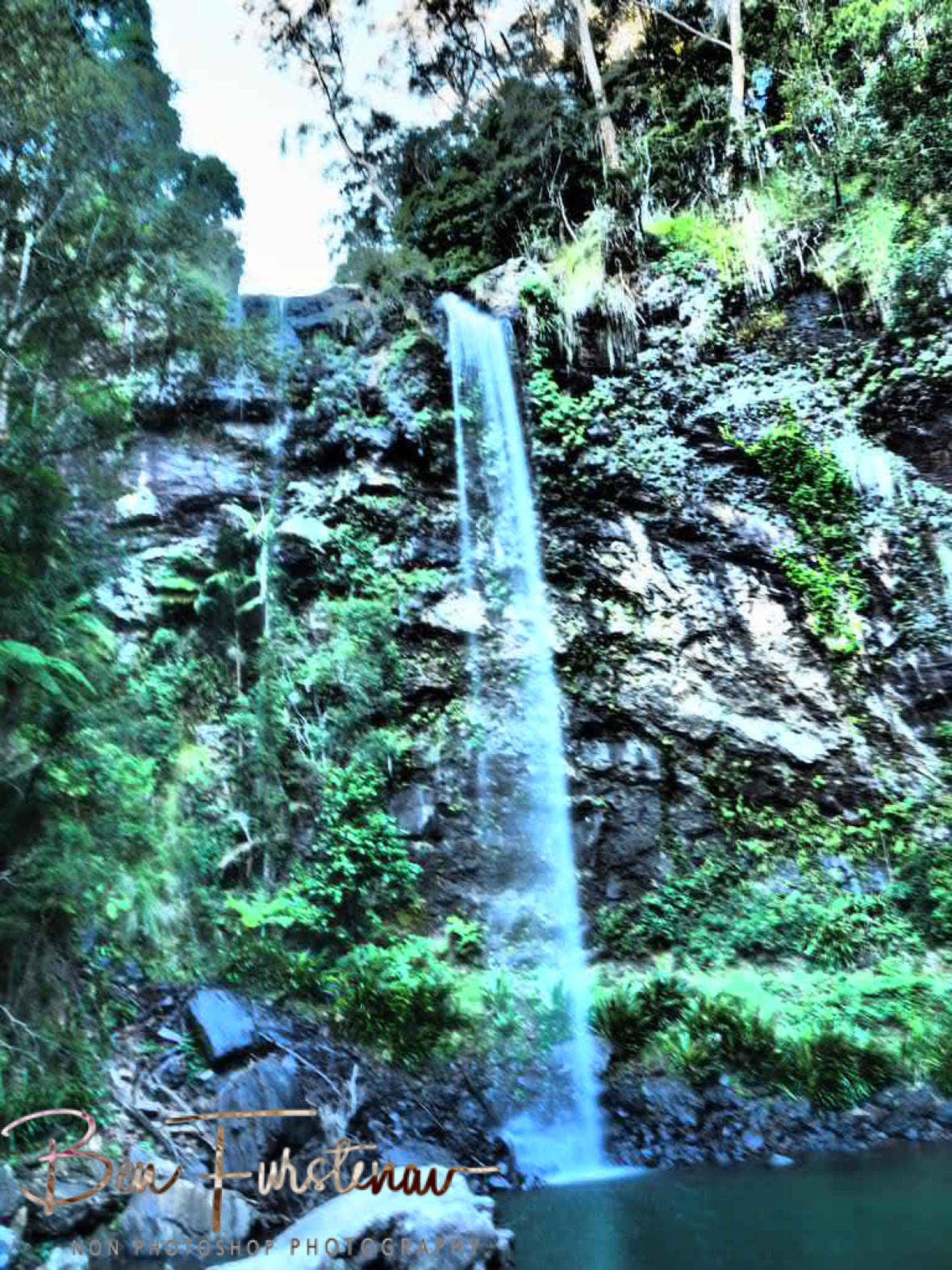 Twin Falls is just a short walk from the car park at Springbrook National Park, Queensland, Australia
