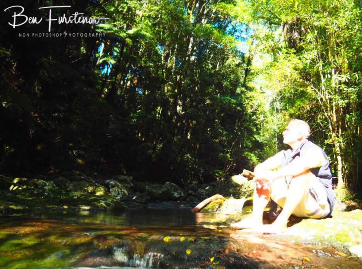 Sunny break at Lamington National Park, Queensland, Australia