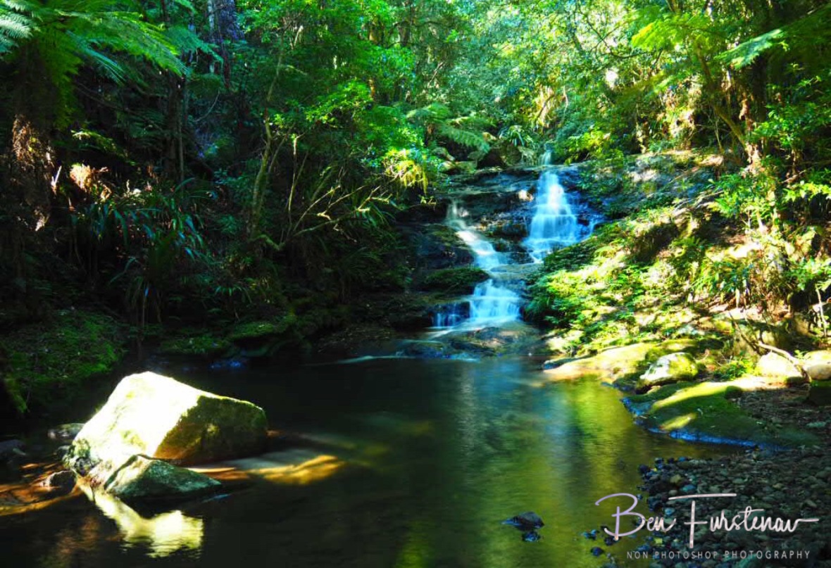 Sub-tropical paradise at Lamington National Park, Queensland, Australia