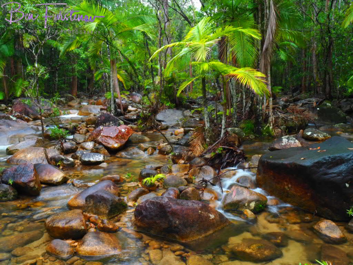 A typical scene along Finch Hatton Creek at Eungalla National Park, Queensland, Australia