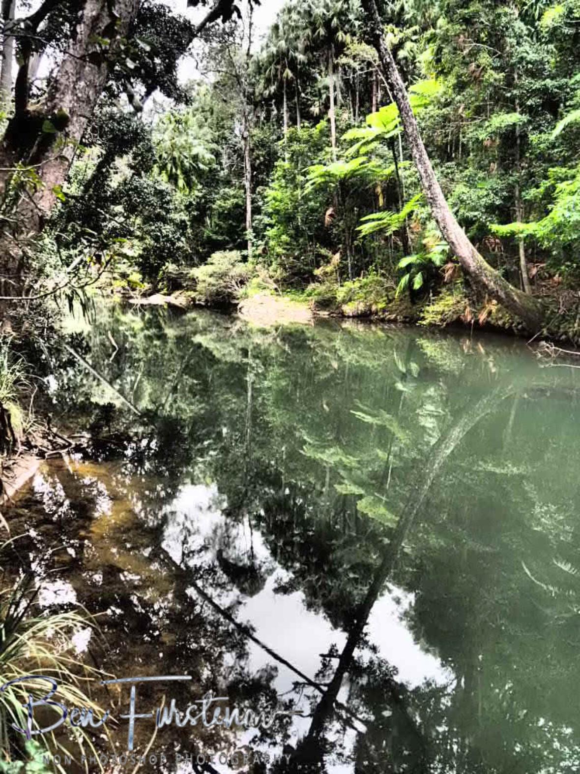 A calm and picturesque habitat for centuries at Eungalla National Park, Queensland, Australia