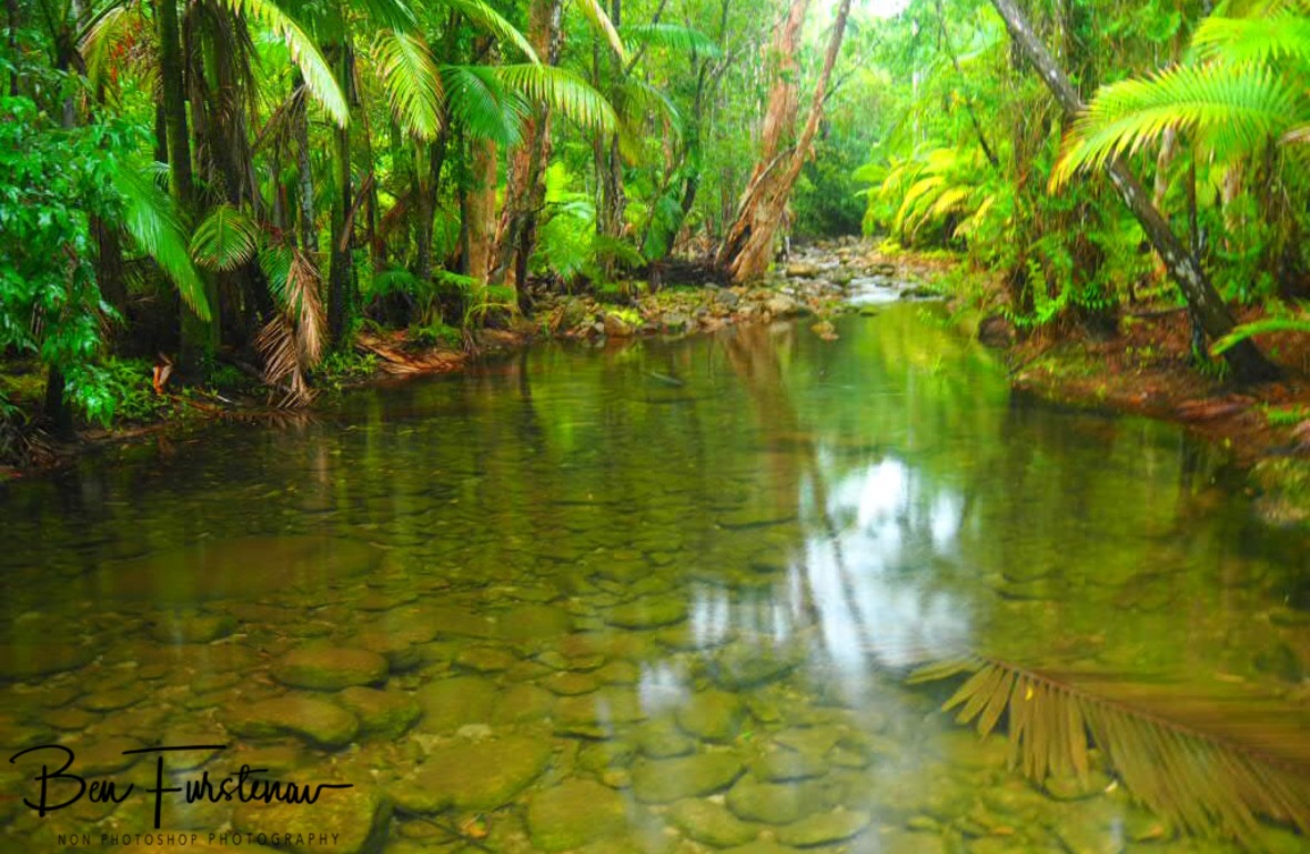 A calm flow at Finch Hatton Creek, Eungalla National Park, Queensland, Australia