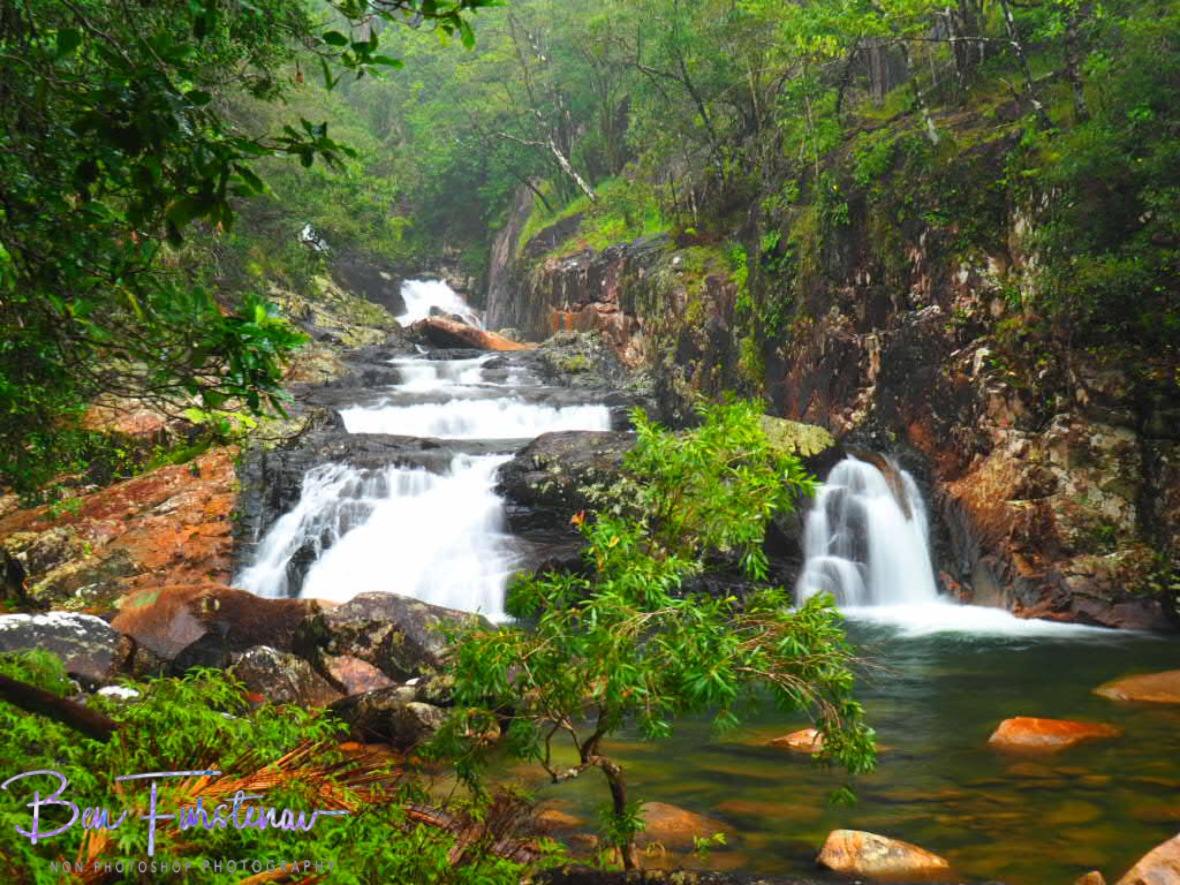 Roaring sounds throughout Finch Hatton Gorge, Eungalla National Park, Queensland, Australia