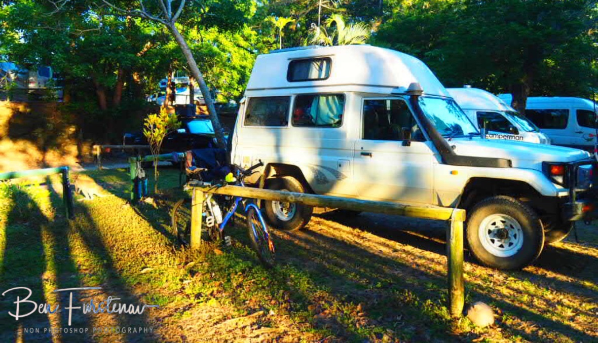 Troopy's hopping guardian at Cape Hillsborough Nature Tourist Park, Queensland, Australia