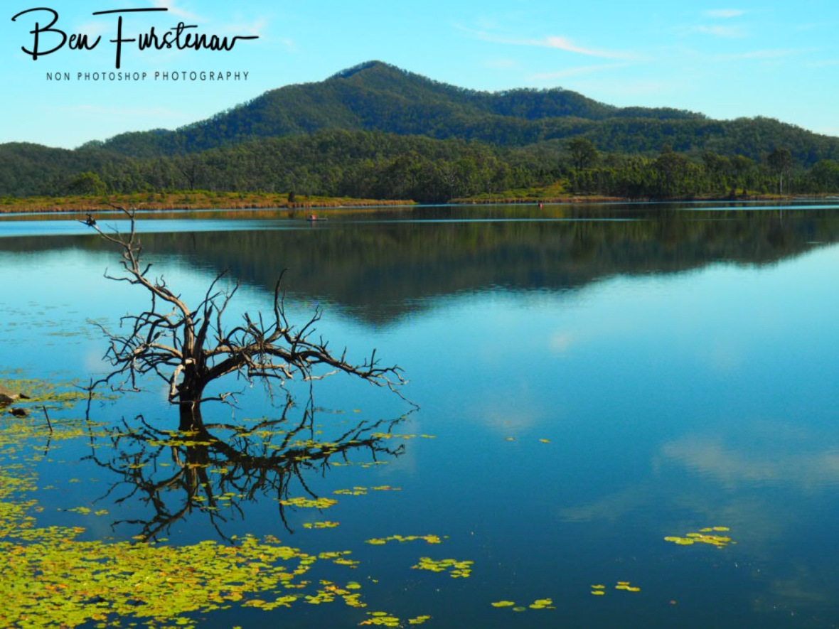 Awesome calm day at Lake Wyralong, Queensland, Australia