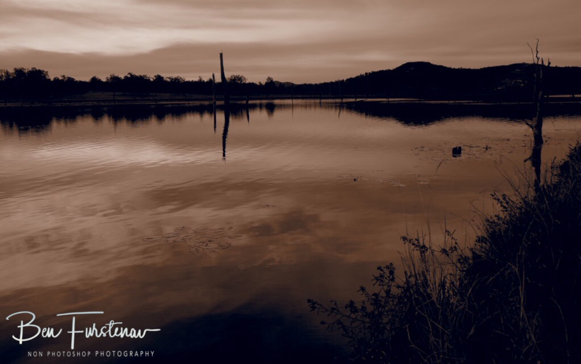 Calm reflections in sepia at Lake Somerset, Queensland, Australia