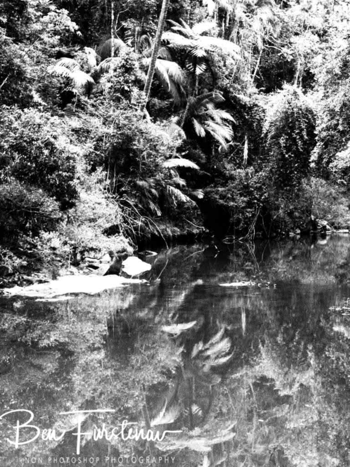 Monochrome reflections at Eungalla National Parks, Queensland, Australia