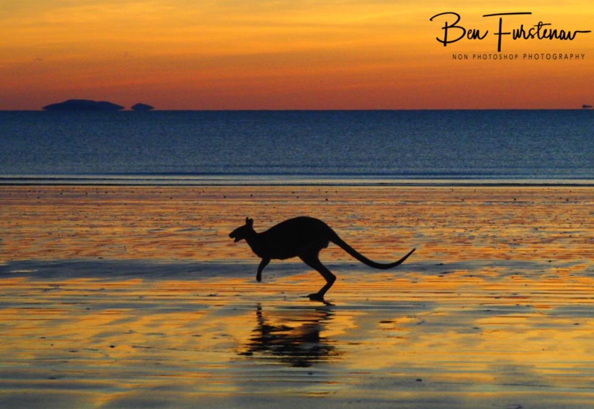 Hopping in to the sunrise at Cape Hillsborough, Queensland, Australia