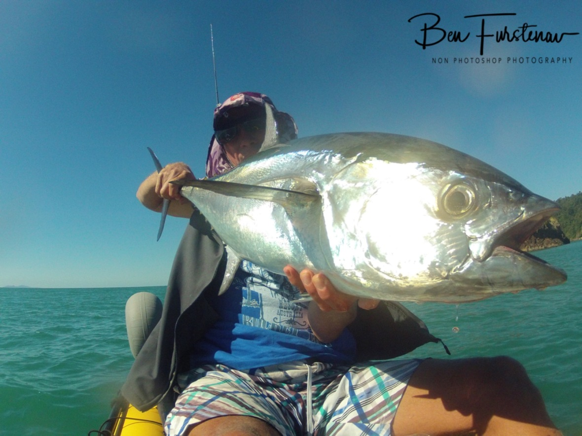 Silver bullet loaded to release at Cape Hillsborough, Queensland, Australia